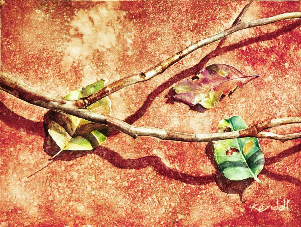 Leaves Fallen
