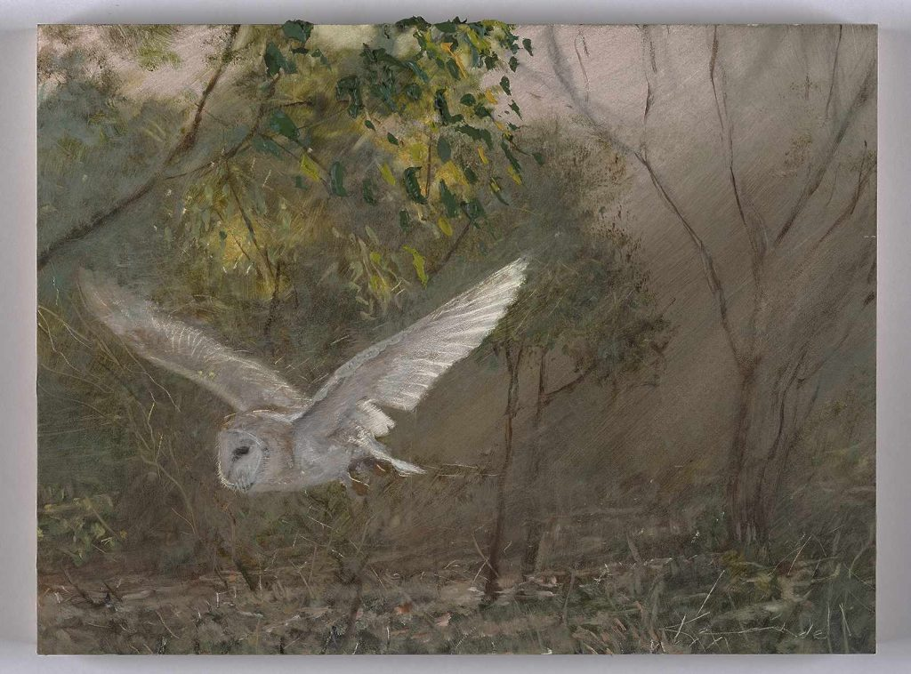 22.wings of the bush.guardian.Nov 2016 oil on board 9X5