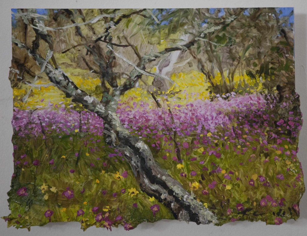 9X12 inches bush Wildflowers WADec 2016