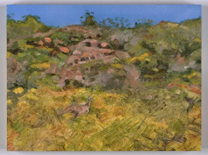 9X12 inches kangaroo-near-jurien.nov-2016.oil-on-board