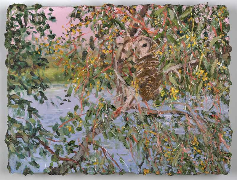 SOLD 9X12 inches  Owl-South-Perth-foreshore.Nov-2016-oil-on-b
