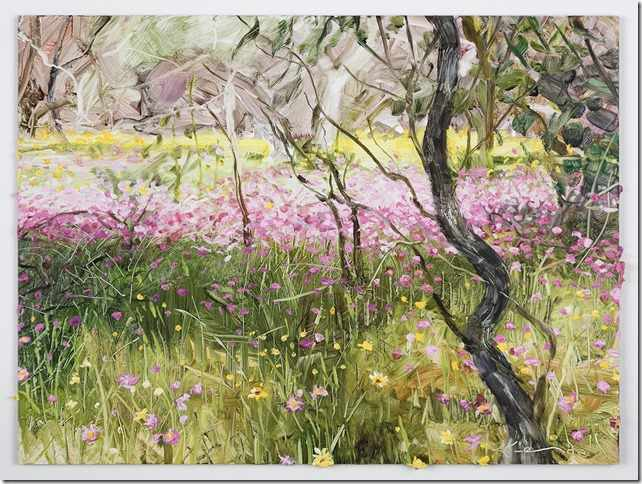 SOLD 9X12 inches pink-everlastings-at-Badgingarra.oil-on-board
