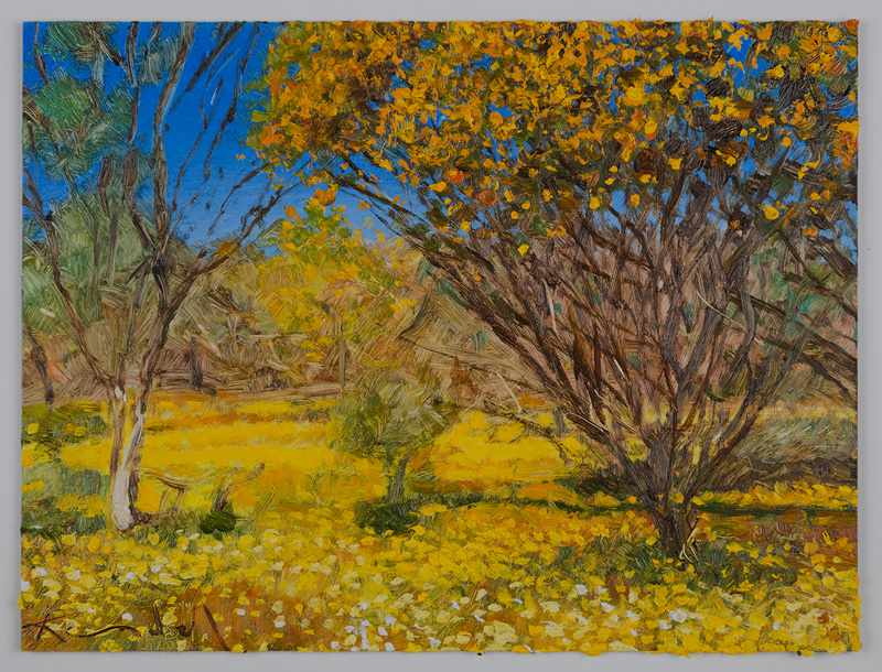 SOLD 9X12inches yellow-everlastings.-Nov-2016-oil-on-board