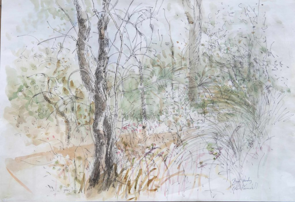 kings park bush study ink and watercolour on paper 90 by 42